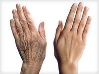 білок старіння