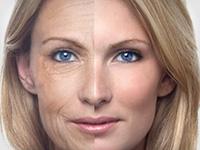 Ліки від старіння будуть створені вже через 5 років