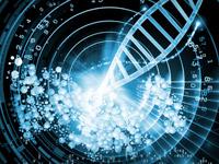 КНК - ксенорибонуклеїнова кислота